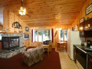 Nice Cabin with Internet Access and Hot Tub - Grand Marais vacation rentals