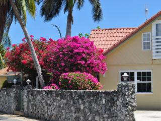 Tiki House Grand Cayman, Seven Mile Beach Area - Grand Cayman vacation rentals
