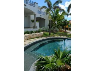 Pool - Blue Pelican Vacation Rentals - Simpson Bay - rentals