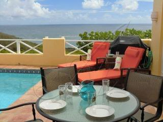 Flamingo Way ~ Private pool & garden; ocean views - Teague Bay vacation rentals