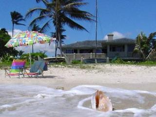 Beachfront Kailua Dream 1 bedroom 1 bath with endless views and all amenities!!! - Kailua vacation rentals