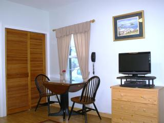 1 bedroom Apartment with Internet Access in Saint George - Saint George vacation rentals