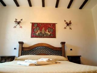 Beautiful flat in the historic centre of Tivoli - Tivoli vacation rentals