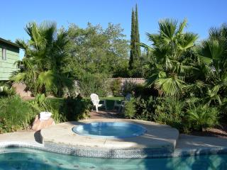 Vegas Oasis - Your personal Oasis in Las Vegas ! - Las Vegas vacation rentals