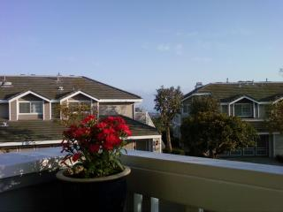 Beautiful ocean view condo near Dana Point, CA - Orange County vacation rentals