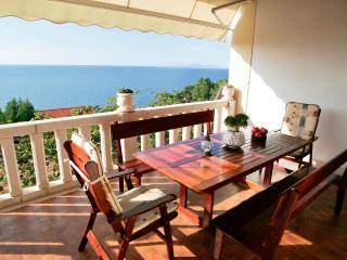 Villa Perka-tranquil spot in beautiful setting - Sveta Nedelja vacation rentals