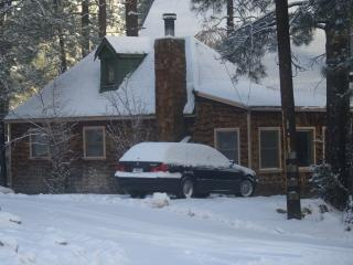 Cozy House with Central Heating and Television - Wrightwood vacation rentals