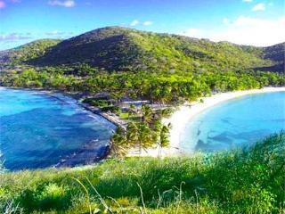 Salt Whistle Bay Club - Mayreau - Mayreau vacation rentals