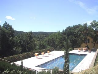 The Yellow House - Civitella d'Agliano vacation rentals