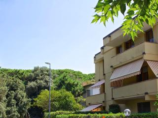 Tuscany vacation rentals Casetta in Versilia Lucca - Viareggio vacation rentals