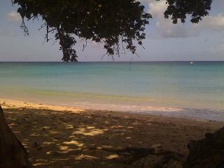 Beautiful Barbados at a great price! - Speightstown vacation rentals
