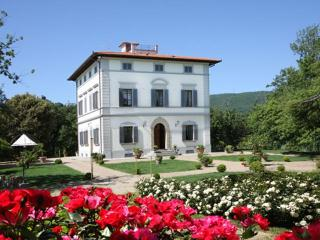 Beautiful Villa in Chianti, luxury Pool - Arezzo vacation rentals