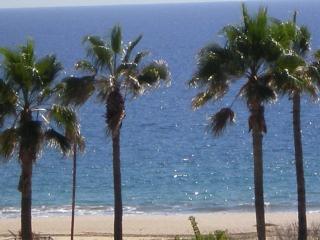 San Jose Del Cabo  2BR/ Ocean View. Ocean View - San Jose Del Cabo vacation rentals