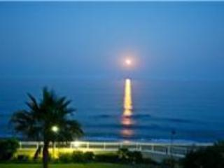 Night View - Luxury 2 bedroom front-line beach apartment - Estepona - rentals