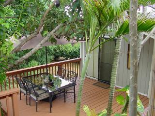 Studio Cottage~Private Jacuzzi~Washer/Dryer - Lihue vacation rentals