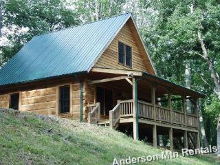 Stay 3 nights get 4th one FREE in March! - Boone vacation rentals