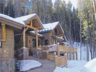 Secluded Luxury Home - 10 Minutes from Vail Mtn. - Vail vacation rentals