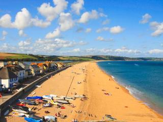 Bijoux Getaway on Spectacular South Devon Coast - Torcross vacation rentals