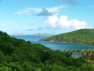 1 bedroom Condo with Deck in Bequia - Bequia vacation rentals