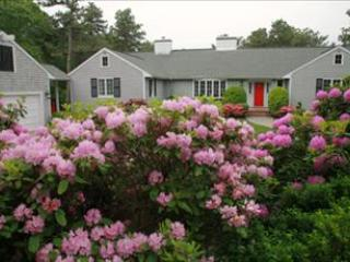 SPECIAL DISCOUNTED RATE:PRIME WEEKS STILL OPEN!! 96974 - Osterville vacation rentals