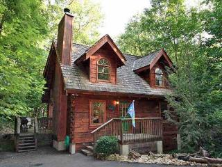 Cozy Gatlinburg getaway - Gatlinburg vacation rentals