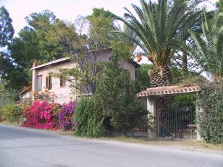 Wisteria House: an old Villa submerged in an Oasis - Cefalu vacation rentals