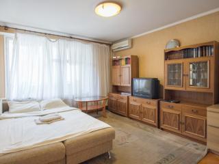 Shabolovskaya Apartment - Moscow vacation rentals