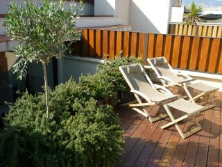 Picasso Duplex **** Cocoon Luxury Terrace (BARCELONA) - Catalonia vacation rentals