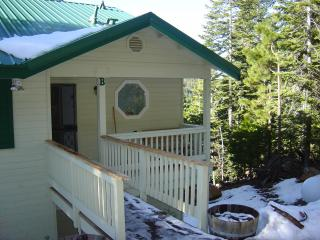 Charming House with Deck and Internet Access - Yosemite National Park vacation rentals