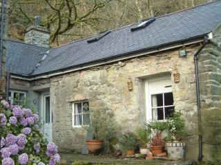 Bwthyn y Gilfach - Romantic Retreat in Snowdonia! - Maentwrog vacation rentals