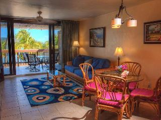 View of Paradise (Fully Renovated Condo) - East End vacation rentals