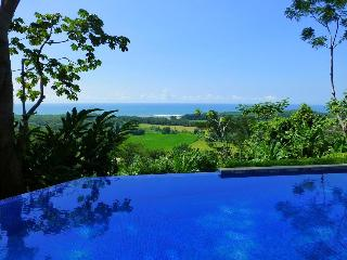 Buena Vista - Luxury, Views &  On-site concierge! - Dominical vacation rentals