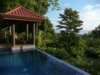 Villa Exotica - Luxury, Sweeping views & concierge - Dominical vacation rentals