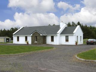 FOREST VIEW, pet friendly, country holiday cottage, with a garden in Dingle, County Kerry, Ref 4042 - Dingle vacation rentals