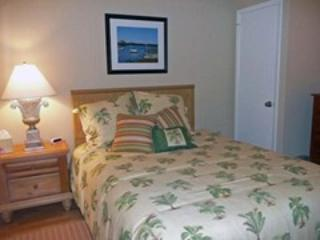 SPRINGS TOWERS 804 - Image 1 - Cherry Grove Beach - rentals