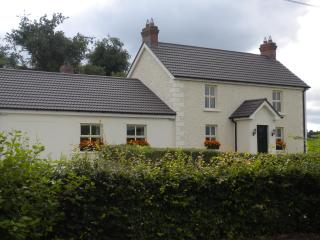 Lovely House with Satellite Or Cable TV and Cleaning Service - Carrickmacross vacation rentals