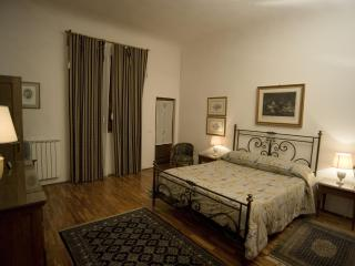Charming flat centre Florence, A/C, Wi-Fi, Terrace - Florence vacation rentals
