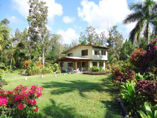 Aloha Lani OCEAN VIEW home,walk to Ocean and Beach, 6 miles to Lava Viewing Area - Pahoa vacation rentals