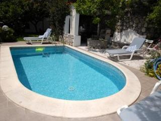 PRIVATE SWIMMING POOL AND SEA VIEW - Campania vacation rentals