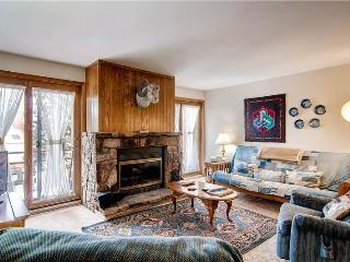 Nice Condo with Internet Access and Fireplace - Silverthorne vacation rentals