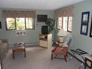 1 bedroom Apartment with Internet Access in Ogunquit - Ogunquit vacation rentals