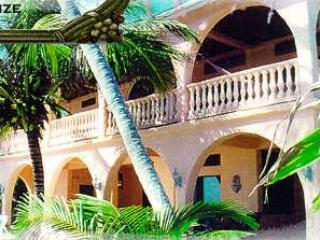 Beautiful Villa with Deck and Internet Access - San Pedro vacation rentals