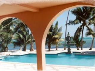 Beautiful Villa with Deck and Internet Access - San Pedro vacation rentals