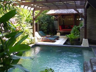 Luxury Apartment with Private Pool - Nusa Dua - Nusa Dua vacation rentals