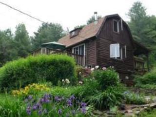The Herbal Bear Catskill Cabin - Romantic cabin on 30 private acres - The Herbal Bear Catskill Cabin - Grand Gorge - rentals