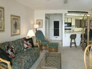 Bright 1 bedroom Vacation Rental in Maalaea - Maalaea vacation rentals