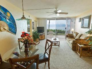 Beautiful 2 bedroom Apartment in Maalaea - Maalaea vacation rentals