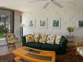 Cozy 2 bedroom Condo in Maalaea - Maalaea vacation rentals