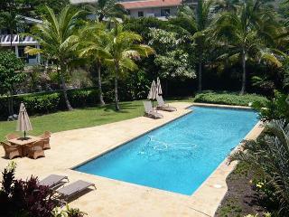 Aloha! Welcome to Kahle Ohana, our brand new Keauhou vacation home.-PHKahle - Kailua-Kona vacation rentals