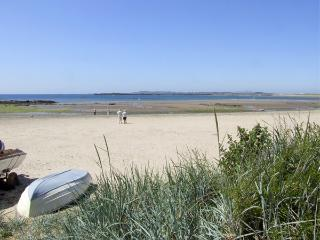 THE GALLERY APARTMENT, romantic, with a garden in Rhosneigr, Ref 3741 - Rhosneigr vacation rentals